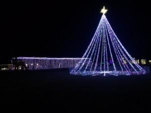 lights-austin1