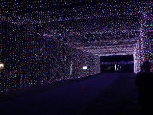 lights-austin2